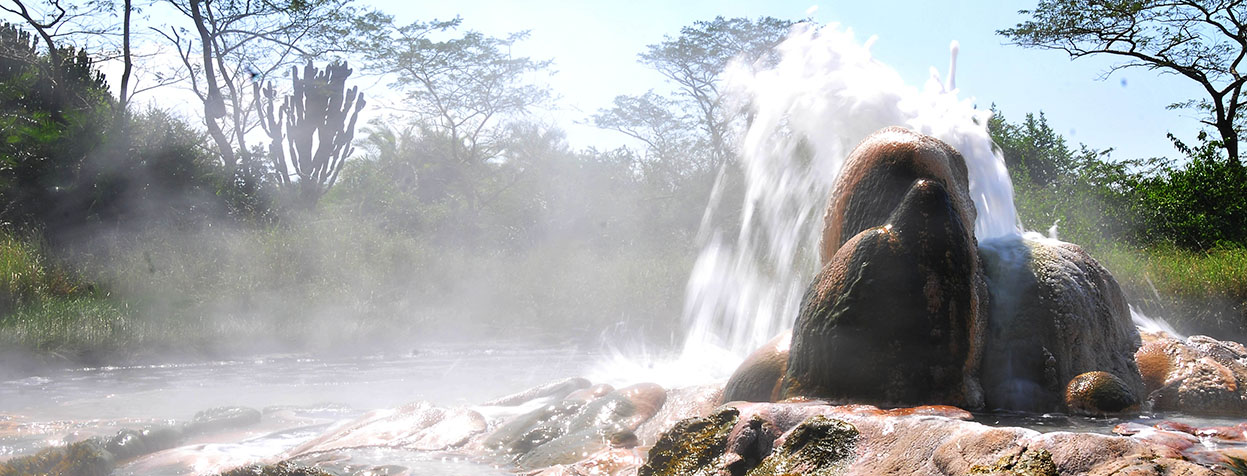 Semuliki National Park - female springs