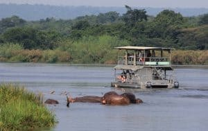 Boat Cruise on a 2 Days Murchison Falls Safari tour