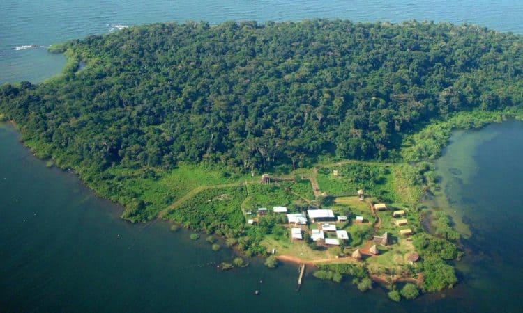 Ngamba Island aerial view - Uganda Primates Safari