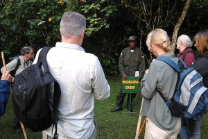 Gorilla Trekking Rules and Regulations in Uganda and Rwanda