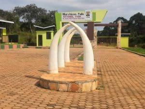 Uganda Re-Opens National Parks for Tourism amid Covid-19 - Uganda Wildlife Authority