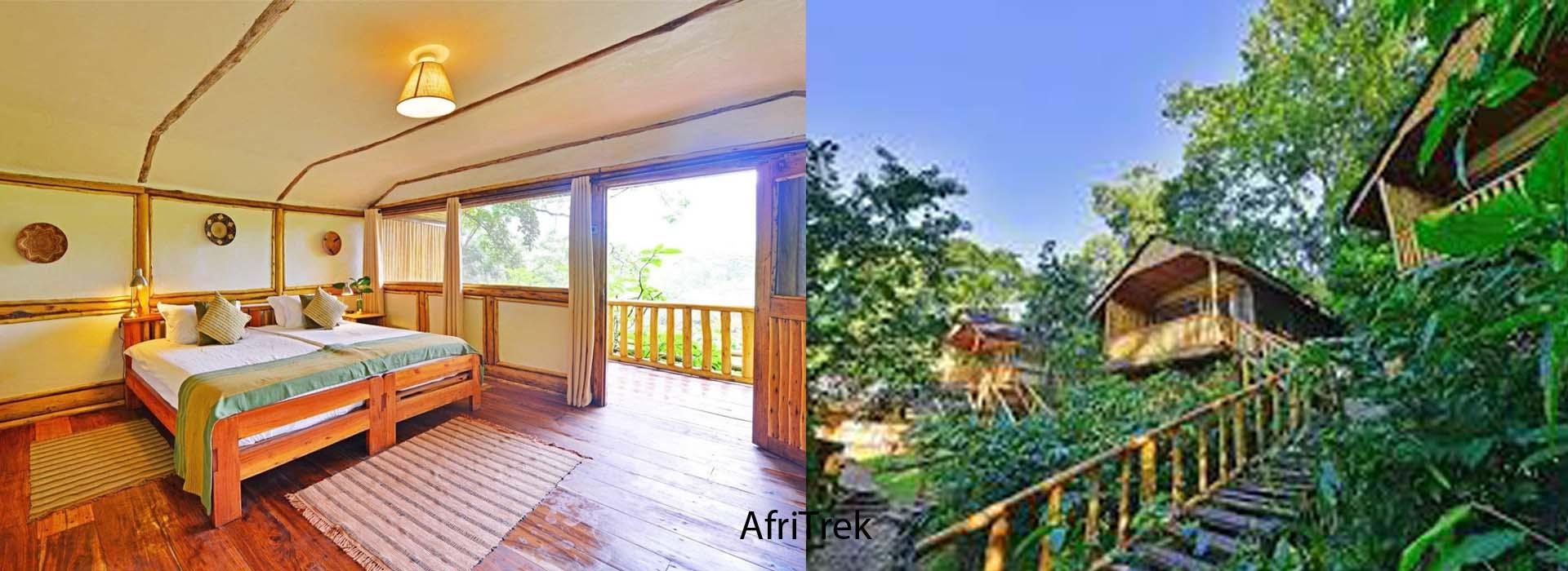 Buhoma Lodge - Gorilla trekking in Buhoma